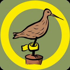 BirdRing